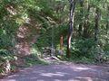 RIMG0003夏の登山口