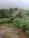 RIMG0041登山道7