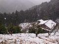 RIMG0120雪がたくさん降ってきた